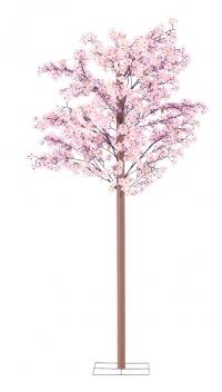 桜立木セット240