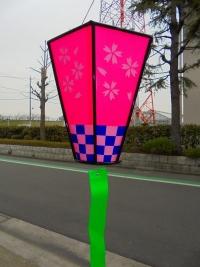 桜ボンボリ25㎝-1